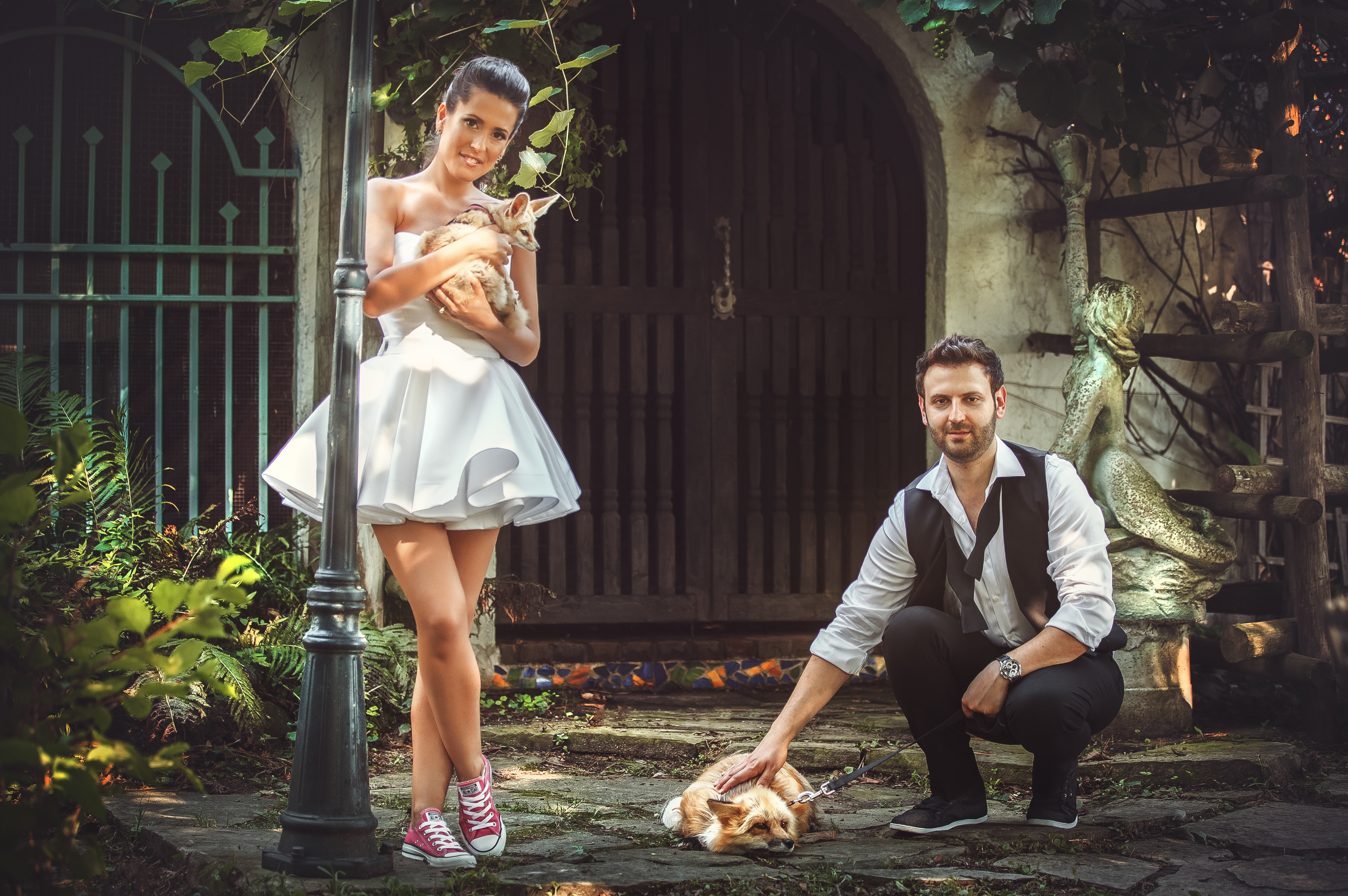 wedding photo shoot shoot ideas animals zoo